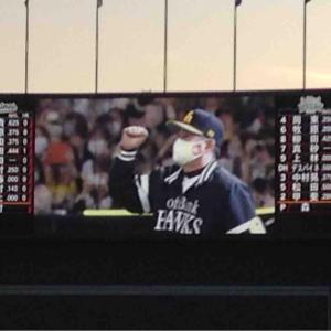 【26試合+α観戦】2020年のプロ野球観戦、終わり