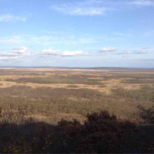 【10.28北海道大遠征】釧路湿原の原野を見てください