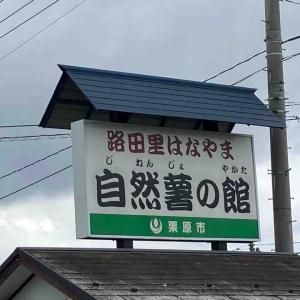 【たっぷ班】道の駅はなやまで自然薯を頂く