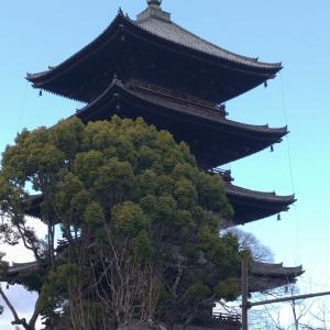 京都東寺の弘法さんへ