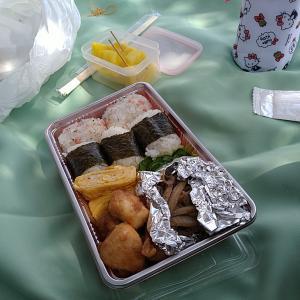 馬見丘陵公園へピクニック