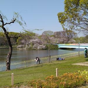 長居公園の植物園