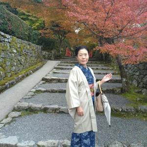 京都一人旅2日目