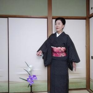 想定着物で京都へ