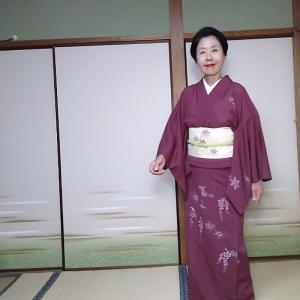 想定キモノ 京紫の絽の付け下げでお茶会へ