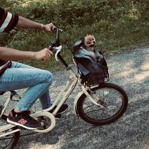 family☆天橋立サイクリング