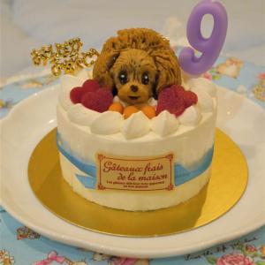 まっちゃ9歳 誕生日ケーキ♪ ①
