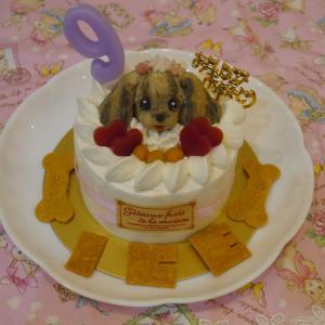 Ice 9歳 バースデーケーキ♪ ②