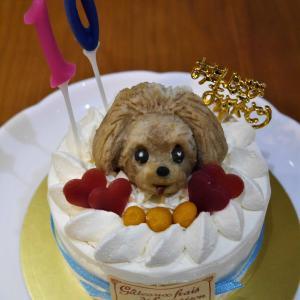 まっちゃ 10さい 誕生日ケーキ ①