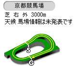 【競馬】菊花賞の枠順が確定 ヴェロックスは7枠13番 ニシノデイジーが1枠2番 ワールドプレミアは3枠5番に