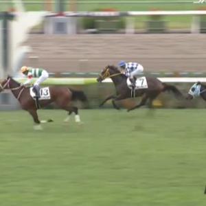 【競馬】京都5R新馬戦 武豊騎乗のレシステンシアが単勝1.4倍の圧倒的人気に応えV
