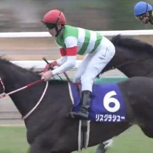 【競馬】ダミアンレーン 今年は不調