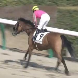 【競馬】オメガパフュームの母につけられた種牡馬がひどい件