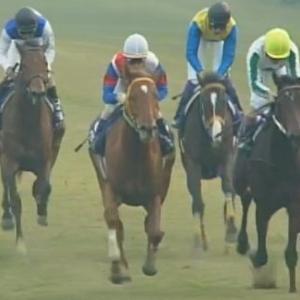 【競馬】グラスワンダーが種牡馬引退