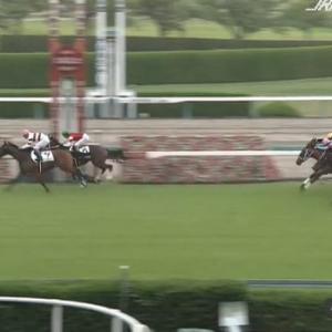 【競馬】阪神5R新馬戦 武豊騎乗のキズナ産駒ダディーズビビッドがV