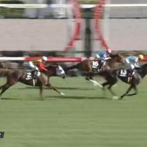 【競馬】ケフェウスSは武豊騎乗のトリコロールブルーがV