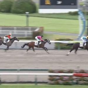 【競馬】中京2R2歳未勝利戦 武豊騎乗のブラックアーメットが快勝