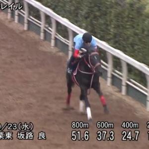 【競馬】コントレイルの追い切りが抜群な件