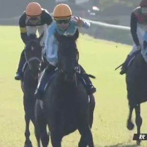 【競馬】デアリングタクトは宇治田原優駿ステーブルへ放牧 次走は未定