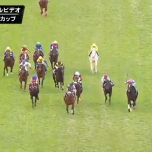 【競馬】ジャパンC 3着デアリングタクト松山の騎乗ってどうだったの?