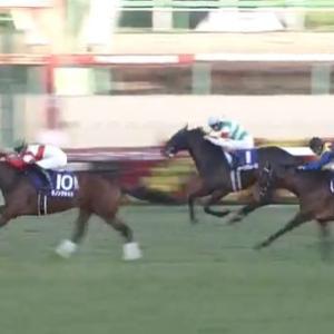 【競馬】ホープフルSは川田騎乗のダノンザキッドがV 武豊騎乗のヨーホーレイクは3着