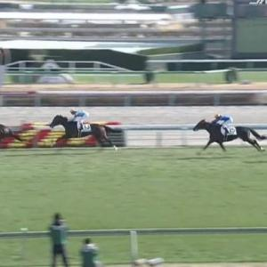 【競馬】中山5R新馬戦 武豊騎乗のホウオウサンデーが快勝