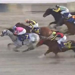 【競馬】東京大賞典はデムーロ騎乗のオメガパフュームが3連覇