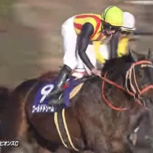 【競馬】ゴールドドリームが今度こそ引退 レックススタッドで種牡馬入り