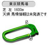 【競馬】安田記念の枠順が確定 アーモンドアイは4枠5番 インディチャンプは4枠6番に