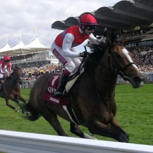 【競馬】香港ヴァーズ4着のディアドラが英ニューマーケットに帰厩 来年も海外を転戦予定
