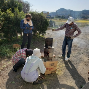 日本蜜蜂のミツロウ取り