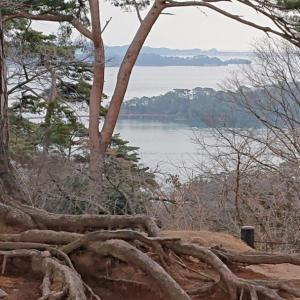 平安の松島に想いを馳せ。。。
