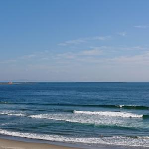 Beach Clean !!!