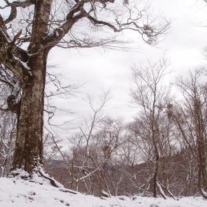 冬の翁たち