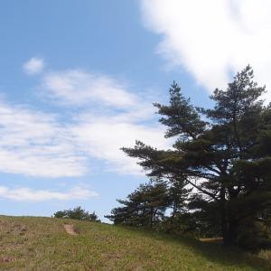 ススキ草原を夢見て