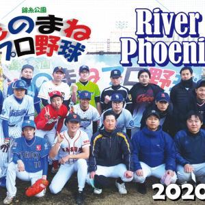 錦糸公園ものまねプロ野球 動画