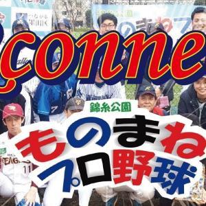 錦糸公園ものまねプロ野球 vs Rconnect