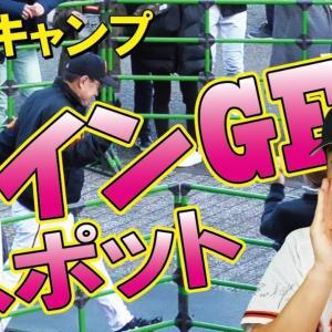宮崎キャンプ会場でのサインゲットスポット教えます!