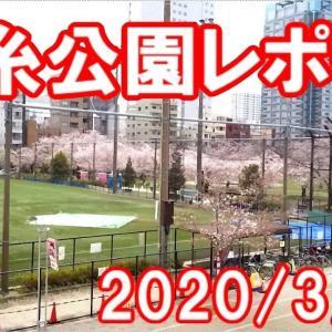 2020/3/28錦糸公園レポート