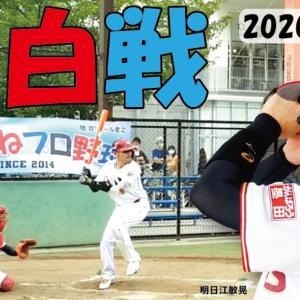 錦糸公園ものまねプロ野球20200620紅白戦