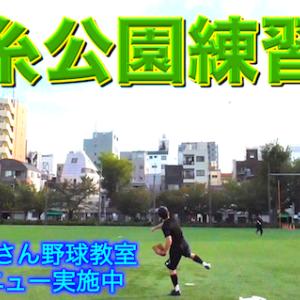 錦糸公園野球練習会