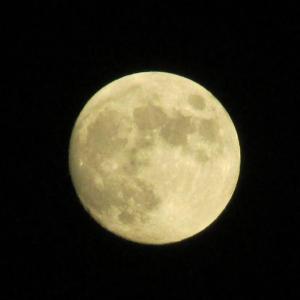 月がとっても綺麗だった7月4日 独立記念日