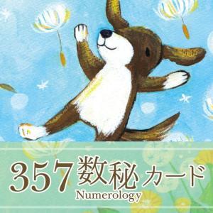 kin賀新年にお知らせと抱負【357数秘カードのティーチャーになりました!】