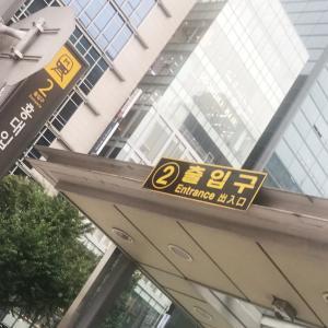 ♡10月おひとりさま韓国女子韓国旅行♡弘大でポッサム♡ミナリ食堂♡