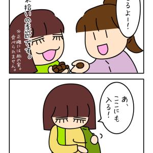 秋の思い出〜栗拾い〜