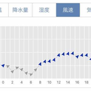 【強風で】再び20kmをキロ430で【気絶】