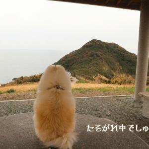 2019年末年始は九州へ4☆最西北端の岬