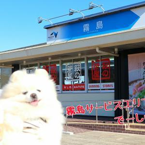 2019年末年始は九州へ10☆宮崎
