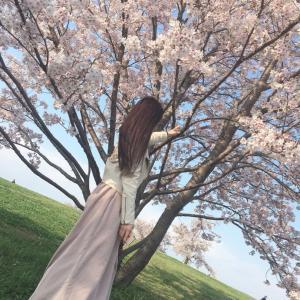 馬見丘陵公園 桜  Flowernail by:chi 奈良ネイルサロンスクール 田原本 王寺
