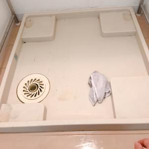 思わぬ事態で洗濯機下の大掃除